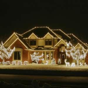 professional-christmas-lights