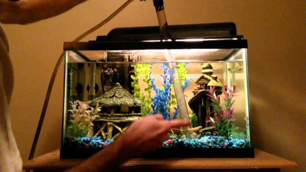 take-fresh-water-for-aquarium