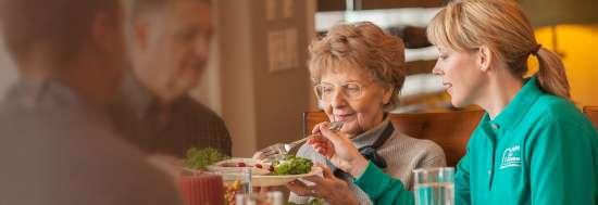 senior citizen's care service